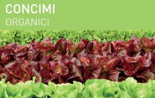 Concimi organici