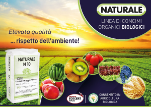 newsletter naturale ARCHIVIO