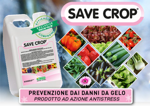 save crop newsletter